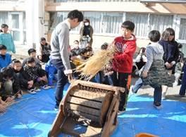 稲を育てる 図3